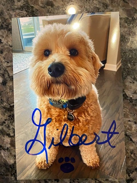 autographed photo of Gilbert - Drawing Contest Prize