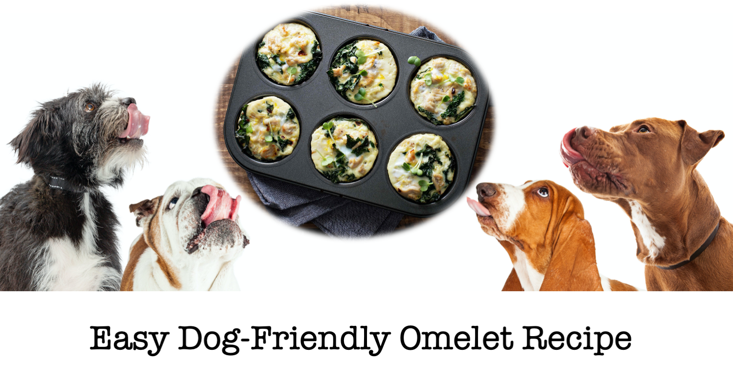 Omelets for Dogs Recipe