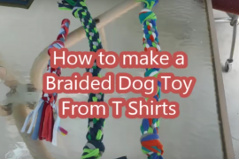 How to Make a Dog Toy from a T-Shirt